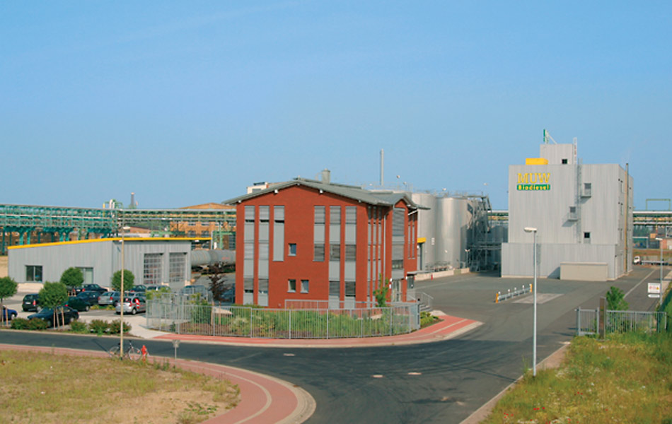 New construction of biodiesel plant in Bitterfeld